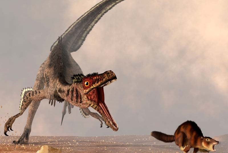 5 cose che non sai sui dinosauri