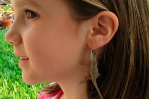 Curiosità animali | Le lucertoline adorano le orecchie!