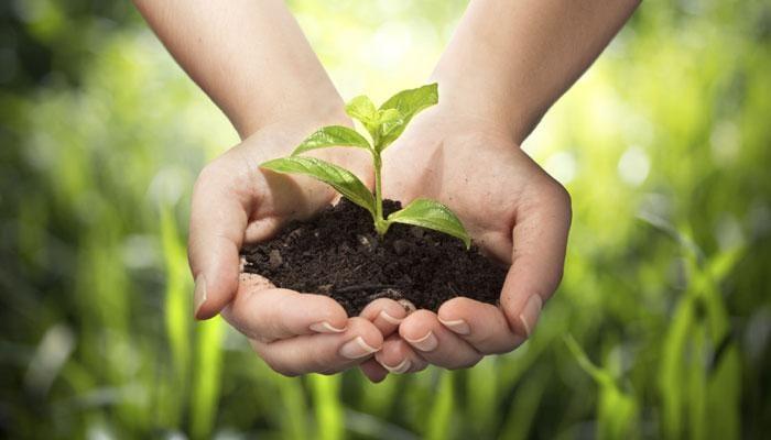 5 Giugno, la Giornata Mondiale dell'Ambiente