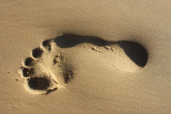 Che cos'è l'impronta ecologica?