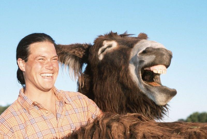 Risate animali | Le espressioni più divertenti degli animali che ridono!
