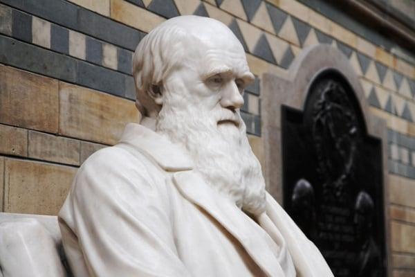 """Charles Darwin, conosciamo il """"padre"""" dell'evoluzione"""