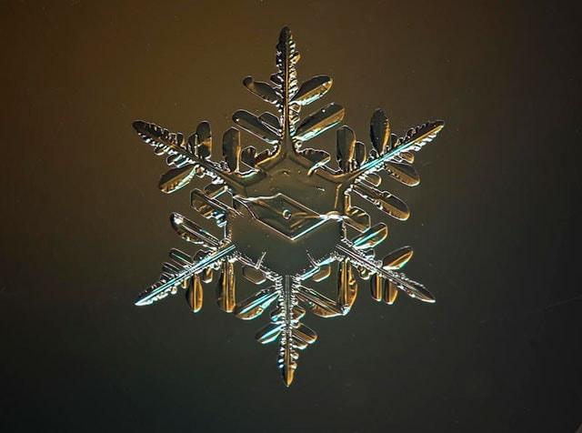 La neve e la geometria: guardiamo i fiocchi di neve al microscopio!