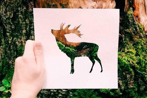 Usa la natura per colorare i tuoi disegni, e poi fotografali!