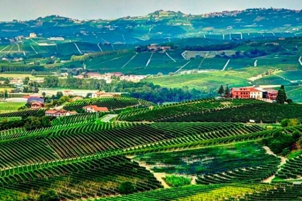 RECORD, ITALIA PATRIMONIO DELL'UMANITÀ | LANGHE E ROERO