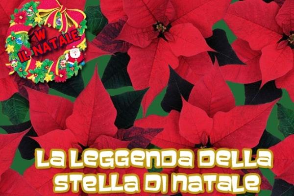 Racconti di Natale: la leggenda messicana della stella di Natale