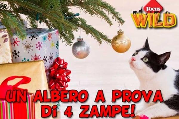 Curiosità animali: un albero di Natale a prova di cane e di gatto | Focus Wild