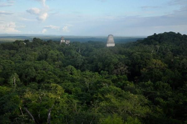 Studente scopre antica città Maya grazie a Google Maps