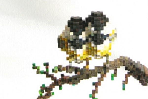 Pixel reali