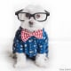 Chi sono gli Hipster? / Image 9