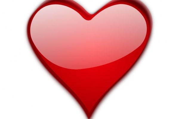 Alla scoperta del corpo umano | Il cuore