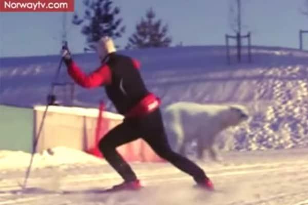 Video divertenti | Ah Ah, che ridere con gli sciatori sfortunati!