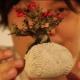 Bonsai volanti | Una novità dal Giappone / Image 0