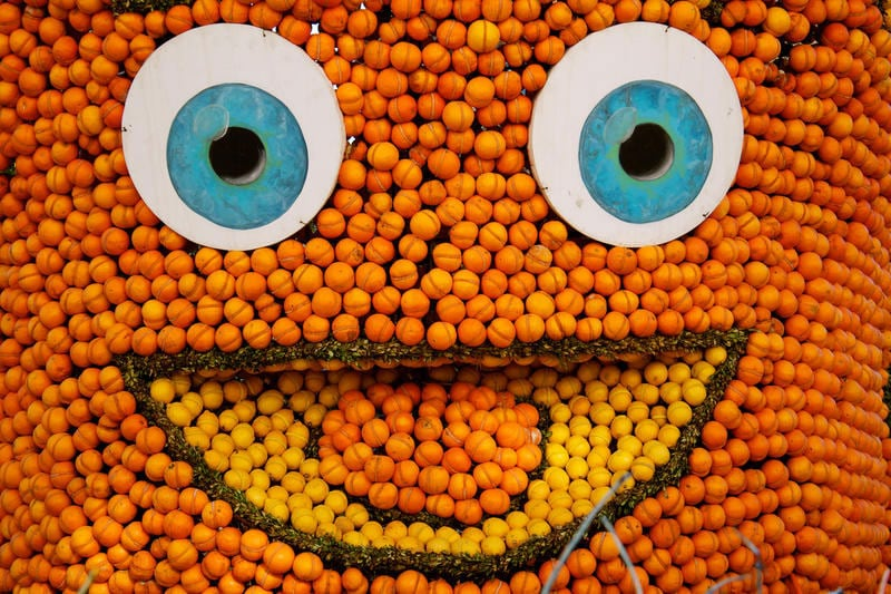Carnevale   A Mentone si festeggia con il limone!