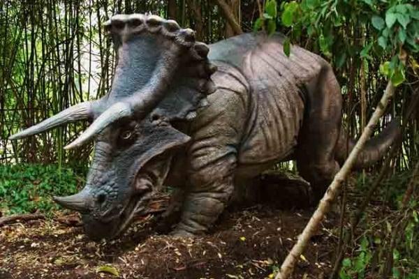 Dinosauri vegetariani: quali erano e quali caratteristiche avevano
