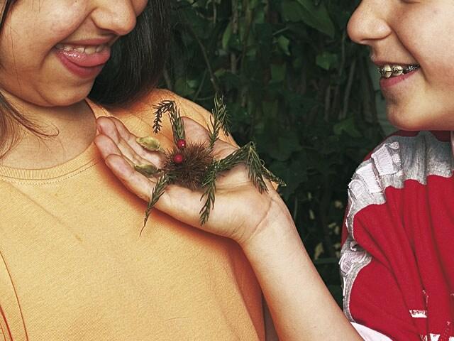 Focusjunior Lab: crea ragni e insetti!