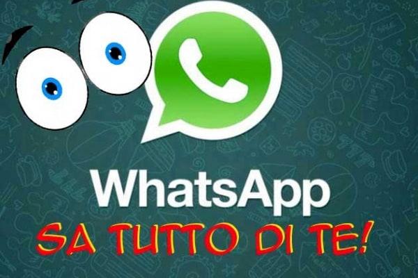 Adesso WhatsApp fa la classifica dei messaggini che mandi. E anche delle foto