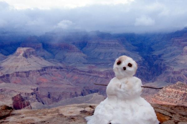 Pazzi pupazzi di neve! E un quattrozampe