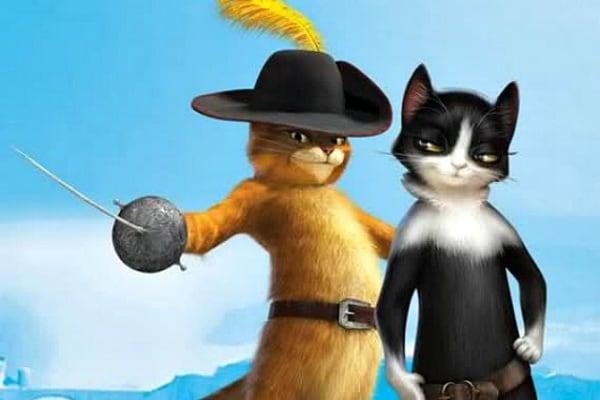 Curiosità animali | I cibi vietati ai gatti
