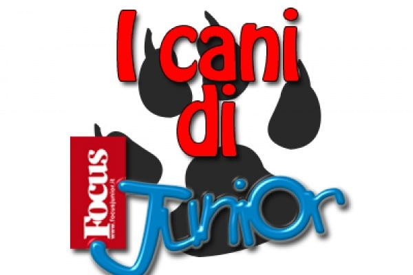 I cani di Focus Junior