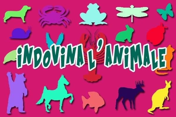 Gioca: indovina l'animale misterioso
