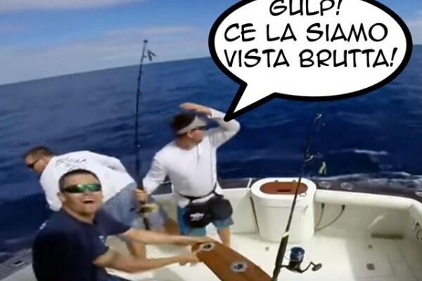 Quando il pescatore viene… pescato | Pesca al pesce vela con sorpresa