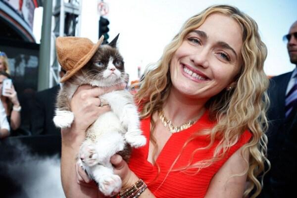 Grumpy Cat | Il gatto più cliccato di internet