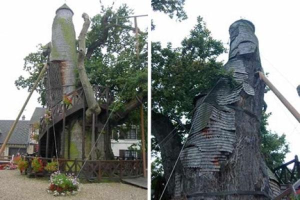 Le case nella natura: la capanna sull'albero è superata!