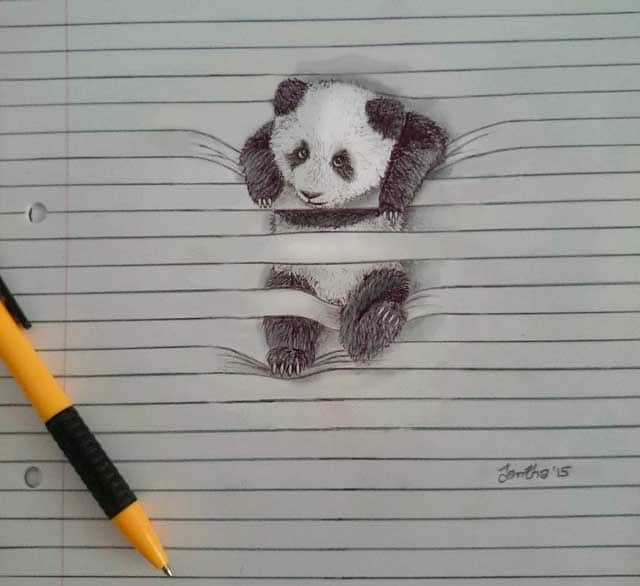 disegni di animali da guardare tra le righe - focus junior