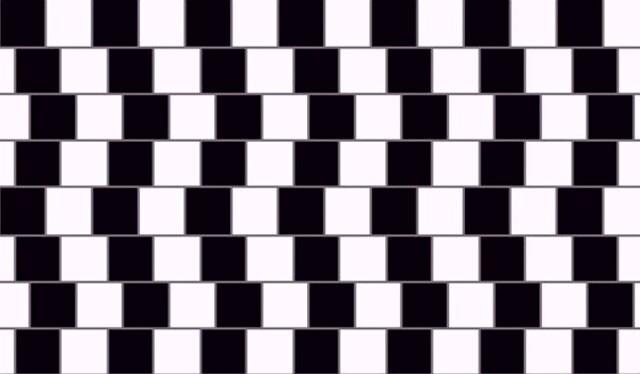 Illusioni ottiche | 7