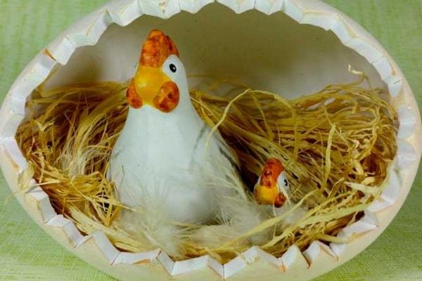 Lo sapevi che | Come respira il pulcino nell'uovo?