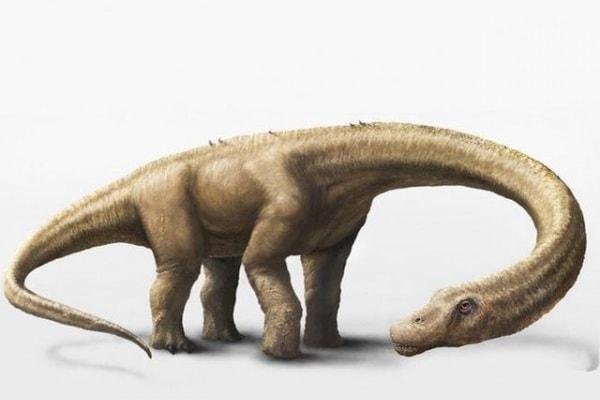 Scoperto il dinosauro più grande di tutti!