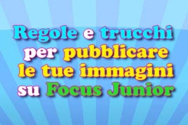 REGOLE PER PUBBLICARE IMMAGINI SU SITO!