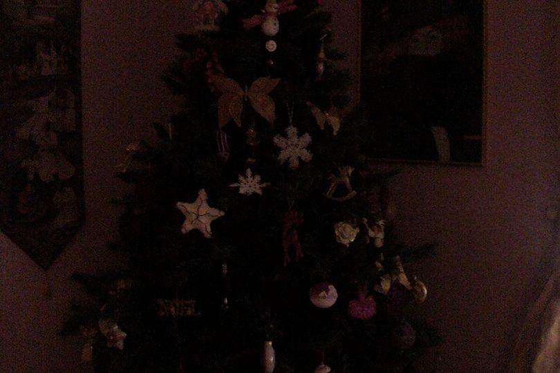 I vostri alberi di Natale: le foto!