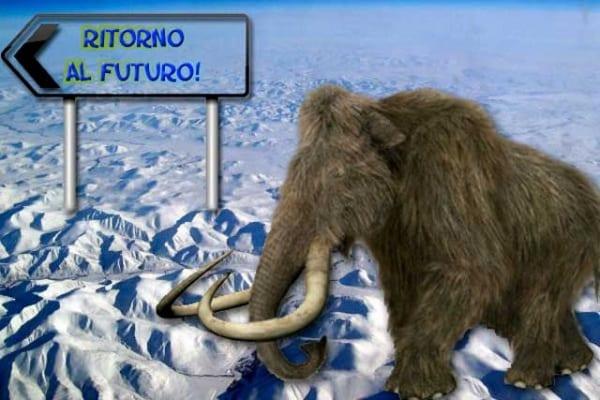 Trovato in Siberia il sangue perfettamente conservato di un mammut. Clonazione in vista: leggi come