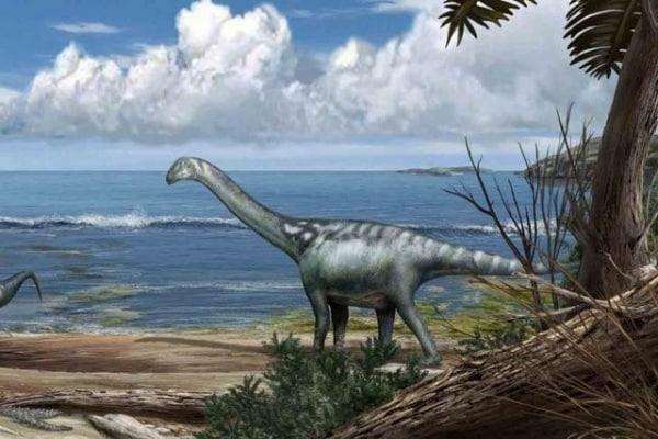 Tito, il dinosauro d'Italia!