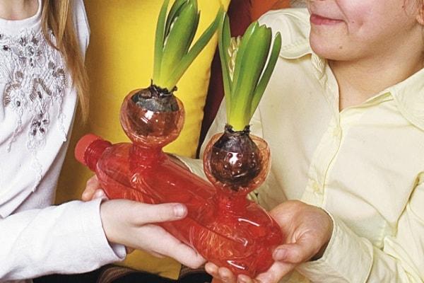 Focusjunior Lab | Fai crescere fiori e piante in bottiglia