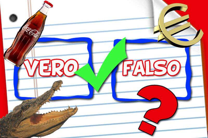 Gioca: vero o falso? | 3