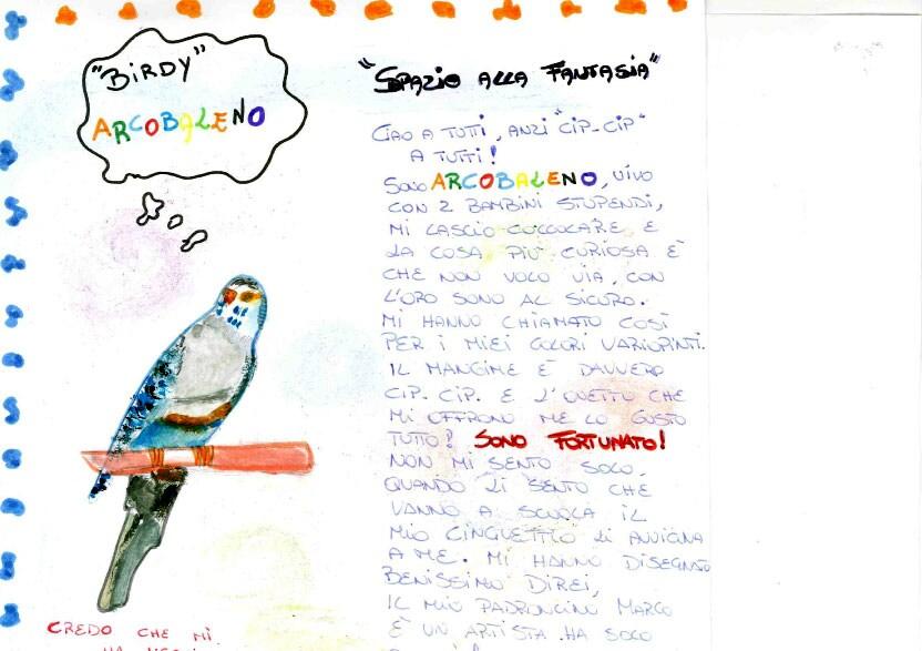 Disegna il tuo birdy i vostri birdy focus junior for Disegna il tuo giardino