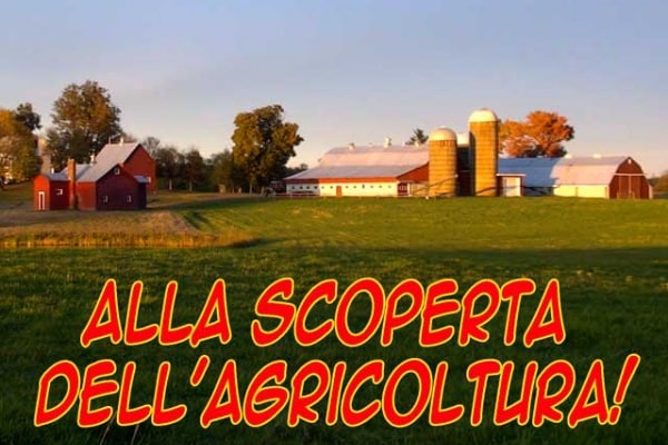 Lo sapevi che… | Cinque importanti curiosità sull'agricoltura