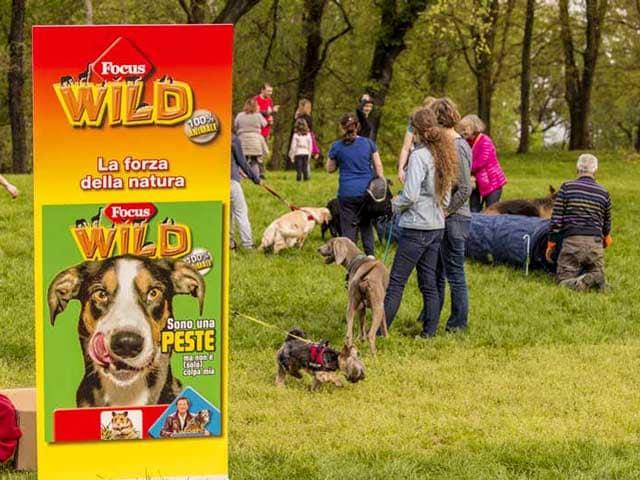 Giocare educando | Una giornata tutta per il tuo cane con Focus Wild e Siua!
