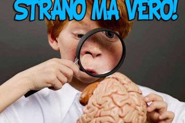 Lo sapevi che? Nove curiosità sul cervello | Strano ma vero!