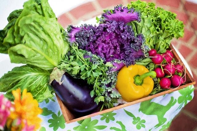 Sondaggio   Cosa pensi dei vegetariani?