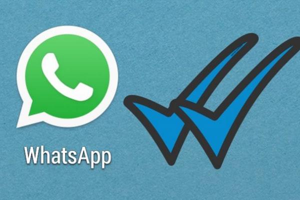 Whatsapp | La doppia spuntatura blu conferma la lettura