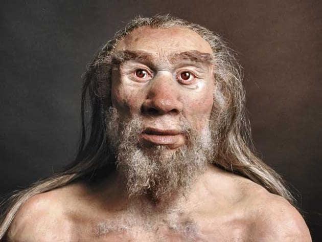 I Neanderthal furono i primi dentisti preistorici!