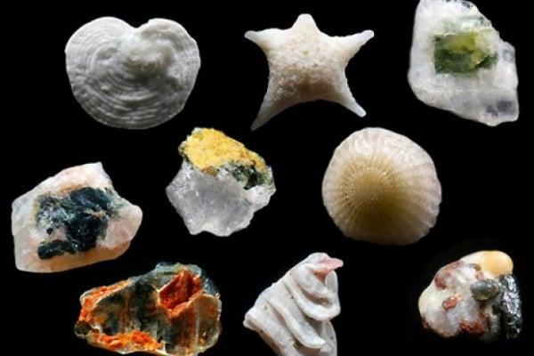 I tesori segreti dei granelli di sabbia