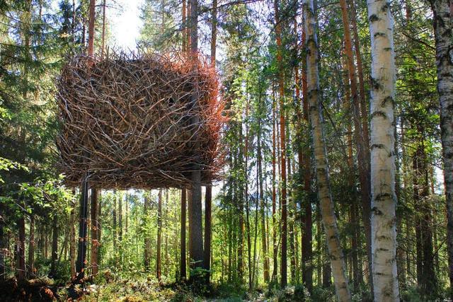Vivere tra i rami | Ecco le più belle case sull'albero del mondo!