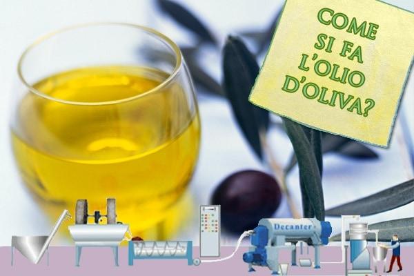 Come si fa l'olio d'oliva? | 2a parte