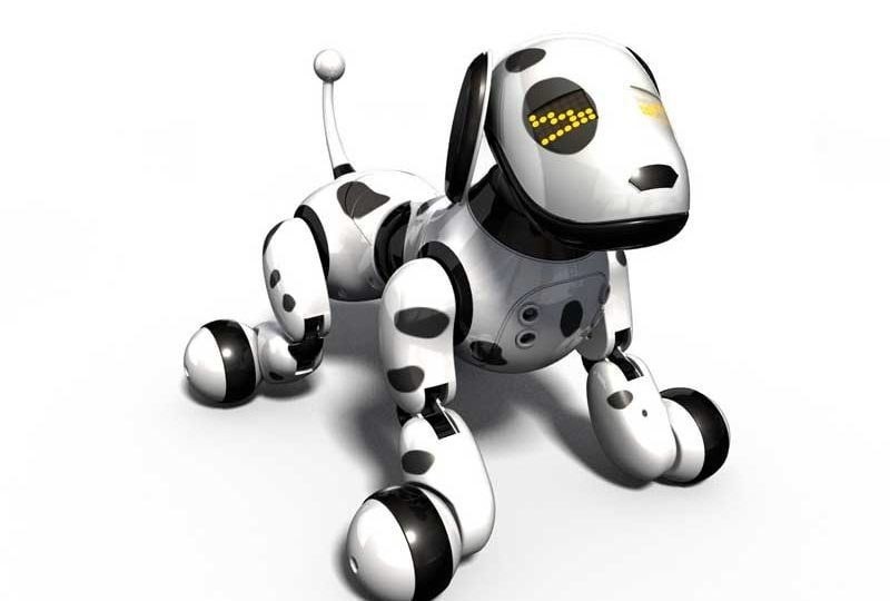 Junior reporter, un Cane-robot nei parchi di Singapore per annusare il Coronavirus