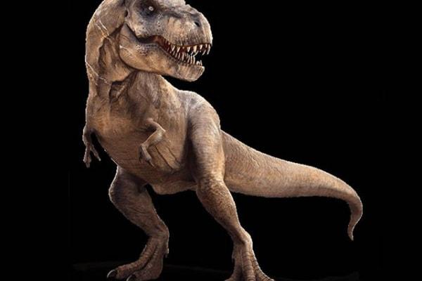 Dinosauri carnivori: conosciamoli da vicino!